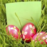 χλόη αυγών Πάσχας Στοκ εικόνες με δικαίωμα ελεύθερης χρήσης