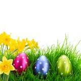 χλόη αυγών Πάσχας στοκ φωτογραφία με δικαίωμα ελεύθερης χρήσης