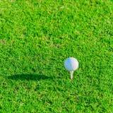 χλόη γκολφ λεσχών σφαιρών Στοκ Φωτογραφίες