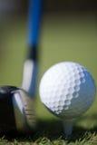 χλόη γκολφ λεσχών σφαιρών Στοκ εικόνες με δικαίωμα ελεύθερης χρήσης