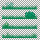 Χλόη, θάμνοι Ένα σύνολο διάφορων τύπων χλοών Σύνολο χλόης σε ένα διαφανές υπόβαθρο Στοκ Εικόνα