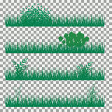 Χλόη, θάμνοι Ένα σύνολο διάφορων τύπων χλοών Σύνολο χλόης σε ένα διαφανές υπόβαθρο Στοκ εικόνες με δικαίωμα ελεύθερης χρήσης