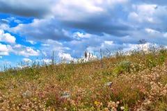 Χλόη και ουρανός Α Στοκ εικόνες με δικαίωμα ελεύθερης χρήσης