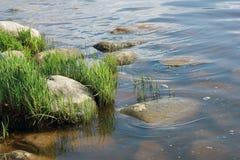 Χλόη και πέτρες στην όχθη ποταμού Στοκ Φωτογραφίες
