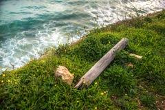 Χλόη σε έναν απότομο βράχο στο υπόβαθρο του ωκεανού σε Portimao Στοκ Εικόνες