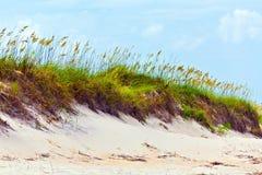 Χλόη σε μια παραλία κατά τη διάρκεια της θυελλώδους εποχής στοκ φωτογραφία