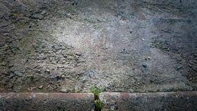 Χλόη Στοκ φωτογραφία με δικαίωμα ελεύθερης χρήσης