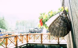 Ψάθινη ένωση καλλιεργητών τοίχων με τα λαμπρά χρωματισμένα λουλούδια σε μια λίμνη στοκ φωτογραφία με δικαίωμα ελεύθερης χρήσης