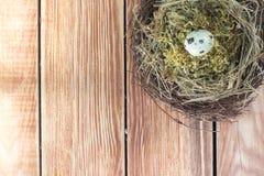 Ψάθινη φωλιά με τη τοπ άποψη αυγών ορτυκιών Στοκ Εικόνες