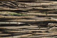 Ψάθινος φράκτης Στοκ Εικόνες