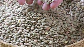 Ψάθινο καλάθι με τα σιτάρια Φασόλια οσπρίων για τα χορτοφάγα τρόφιμα απόθεμα βίντεο