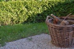Ψάθινο καλάθι με το κούτσουρο στοκ φωτογραφία με δικαίωμα ελεύθερης χρήσης