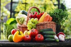 Ψάθινο καλάθι με τα ανάμεικτα ακατέργαστα οργανικά λαχανικά στον κήπο στοκ φωτογραφίες
