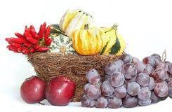 Ψάθινο καλάθι με τις κολοκύθες κολοκυθών, τα μπλε σταφύλια, τα μήλα και το τσίλι Στοκ Φωτογραφία
