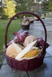 Ψάθινο καλάθι με το καλαμπόκι, τα καρύδια, την κολοκύθα και το κρεμμύδι Στοκ φωτογραφίες με δικαίωμα ελεύθερης χρήσης