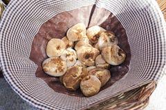 Ψάθινο σύνολο καλαθιών των ψωμιών Στοκ φωτογραφία με δικαίωμα ελεύθερης χρήσης