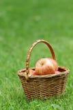 Ψάθινο σύνολο καλαθιών των μήλων gala Στοκ φωτογραφία με δικαίωμα ελεύθερης χρήσης