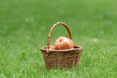 Ψάθινο σύνολο καλαθιών των μήλων gala Στοκ Εικόνα