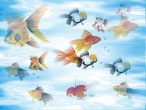 ψάρια ανασκόπησης ελεύθερη απεικόνιση δικαιώματος