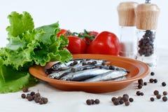 Ψάρια αντσουγιών σε ένα πιάτο με τα χορτάρια, κλάδος των ντοματών και πικάντικος Στοκ φωτογραφία με δικαίωμα ελεύθερης χρήσης