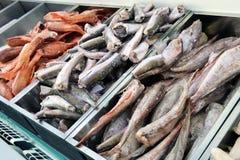 Ψάρια από έναν πίνακα με τα εμπορευματοκιβώτια με το διάφορο είδος των ψαριών pict Στοκ Φωτογραφίες