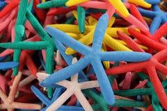 Ψάρια αστεριών Στοκ εικόνα με δικαίωμα ελεύθερης χρήσης