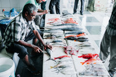 Ψάρια για την πώληση στην αγορά ψαριών στην πόλη του αρσενικού, πρωτεύουσα των Μαλδίβες Στοκ Εικόνες