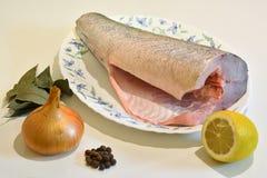 Ψάρια για το μαγείρεμα σε μια πιατέλα και τα καρυκεύματα Στοκ εικόνες με δικαίωμα ελεύθερης χρήσης