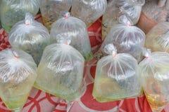 Ψάρια ενυδρείων που συσκευάζονται σε μια πλαστική τσάντα για την πώληση σε μια αγορά μέσα στοκ φωτογραφίες με δικαίωμα ελεύθερης χρήσης