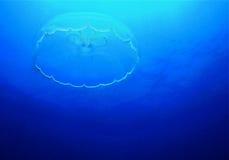 Ψάρια ζελατίνας Στοκ εικόνες με δικαίωμα ελεύθερης χρήσης