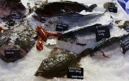 Ψάρια θάλασσας για την πώληση Στοκ εικόνες με δικαίωμα ελεύθερης χρήσης
