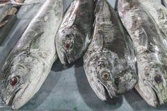 Ψάρια θαλασσινών πώλησης φρέσκα στην τοπική αγορά τουριστικού αξιοθεάτου σε Jimbaran, Μπαλί Στοκ Εικόνες