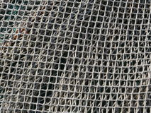 Ψάρια καθαρά στοκ εικόνα με δικαίωμα ελεύθερης χρήσης