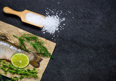 Ψάρια και άλας με το διάστημα αντιγράφων Στοκ Εικόνα