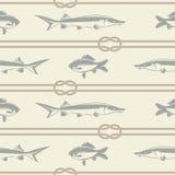 ψάρια και ένα σχέδιο σχοινιών Στοκ φωτογραφία με δικαίωμα ελεύθερης χρήσης