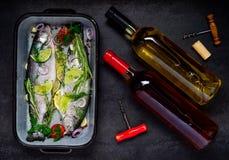 Ψάρια και κρασί Στοκ εικόνες με δικαίωμα ελεύθερης χρήσης