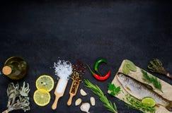 Ψάρια και μαγειρεύοντας συστατικά με το διάστημα αντιγράφων Στοκ Εικόνες