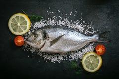 Ψάρια και συστατικά Gilthead Στοκ εικόνα με δικαίωμα ελεύθερης χρήσης