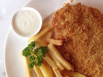 Ψάρια και τηγανισμένος Στοκ εικόνα με δικαίωμα ελεύθερης χρήσης