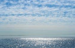 Ψάρια κοπαδιών δελφινιών catche Στοκ Εικόνες