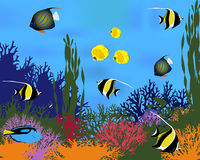 Ψάρια κοραλλιών Απεικόνιση αποθεμάτων