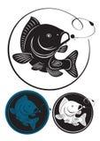 ψάρια κυπρίνων Στοκ Εικόνα