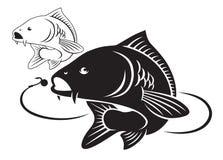 Ψάρια κυπρίνων απεικόνιση αποθεμάτων
