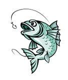 Ψάρια κυπρίνων Στοκ εικόνα με δικαίωμα ελεύθερης χρήσης