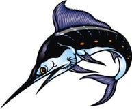 Ψάρια μαρλίν απεικόνιση αποθεμάτων