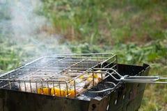 Ψάρια με τα λαχανικά και το γλυκό πιπέρι που προετοιμάζονται στη σχάρα μεγάλη Στοκ εικόνες με δικαίωμα ελεύθερης χρήσης