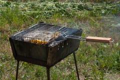 Ψάρια με τα λαχανικά που μαγειρεύονται στη σχάρα σχαρών σε μια σχάρα σιδήρου, Στοκ φωτογραφίες με δικαίωμα ελεύθερης χρήσης