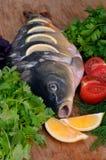 Ψάρια με τα φρέσκα λαχανικά και τα χορτάρια Στοκ εικόνες με δικαίωμα ελεύθερης χρήσης