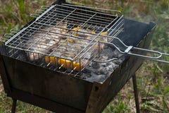 Ψάρια με το γλυκό πιπέρι και λεμόνι που ψήνεται σε μια σχάρα στον κήπο Στοκ εικόνες με δικαίωμα ελεύθερης χρήσης