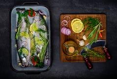 Ψάρια με το μαγείρεμα των συστατικών Στοκ φωτογραφία με δικαίωμα ελεύθερης χρήσης